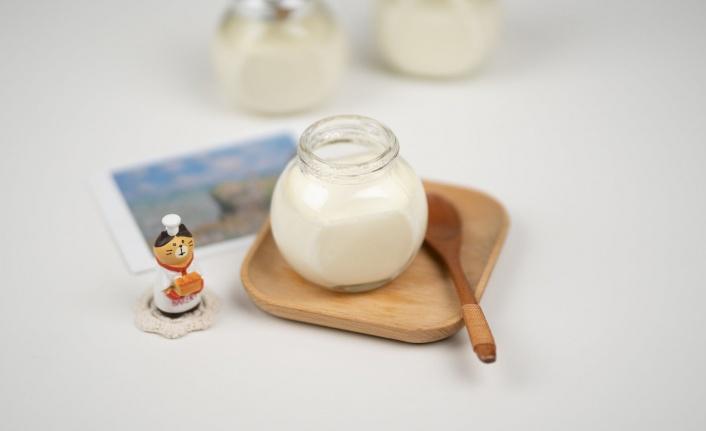 Evde Manda Yoğurdu Nasıl Yapılır?