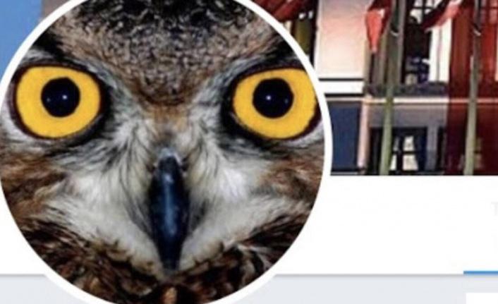Ankara Kuşu Kimdir?