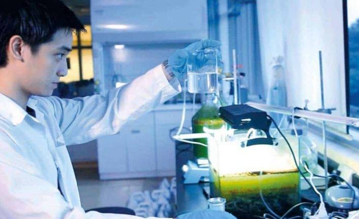 Kimya bölümü mezunları sağlık personeli olarak atanabilir mi?