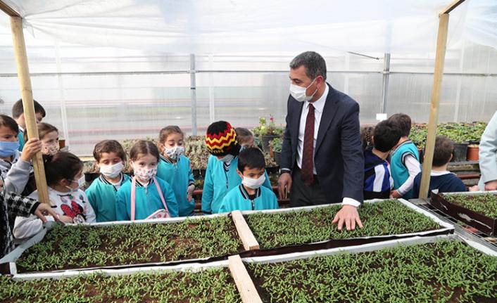 Başkan Şimşek: Ata tohumundan ürettiğimiz fideleri dağıtacağız