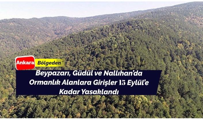 Beypazarı, Güdül ve Nallıhan'da Ormanlara Giriş Yasaklandı