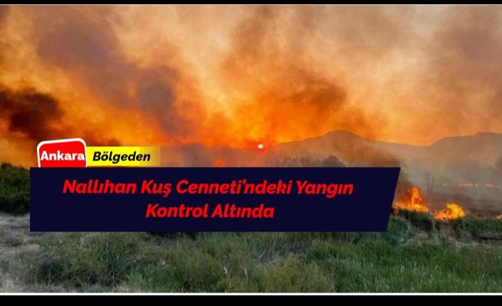 Nallıhan Kuş Cenneti'nde Meydana Gelen Yangın Kontrol Altına Alındı