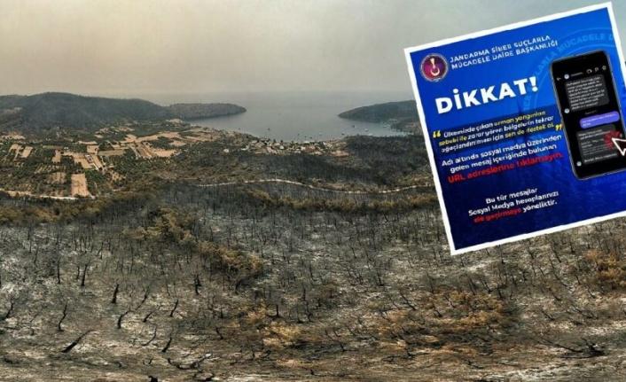 Sosyal medyadaki 'ağaç bağışı' için uyarılar geldi