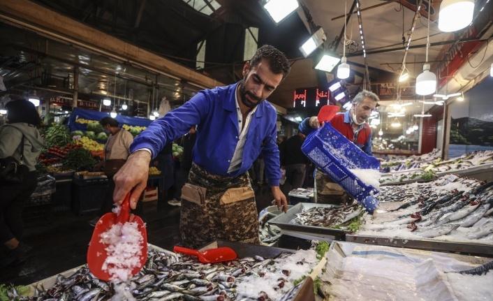 Ankaralıların yüzünü güldüren balık bolluğu