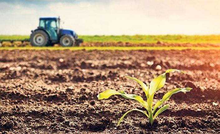 İklim nedeniyle verim kaybeden üreticilere destek geliyor