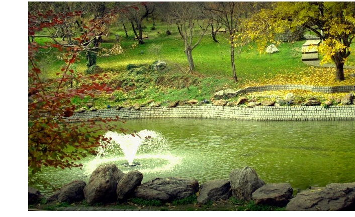 Ankara'da Gezilecek Parklar! Ankara'da Nerede Yürüyüş Yapılır?