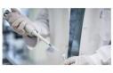 Rusya yeni tip korona virüsü tedavi edecek ilaç...