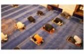 Camiler açıldı, Ankara Hacı Bayram Camisi doldu taştı