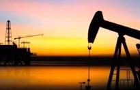 Petrol aranmasına Bakanlıktan onay!
