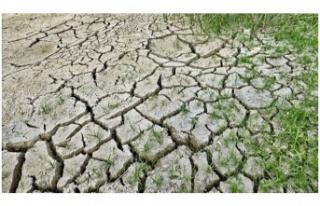 İklim değişikliği büyük risk!