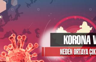 Corona Virüsü Neden Ortaya Çıktı
