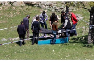 Ankara'da ayı saldırısı! 60 yaşındaki kadın...