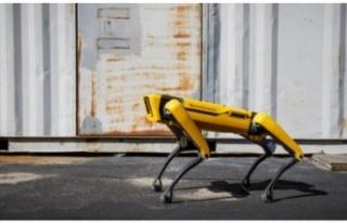 Boston Dynamics'in Meziyetli Robot Köpeği Spot,...