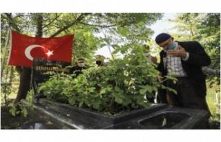 Abdurrahim Karakoç vefatının 8. yılında kabri...