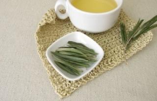 Zeytin Yaprağı Çayı Nasıl Demlenir? Zeytin Yaprağı...