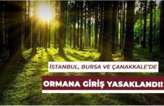 İstanbul, Bursa Ve Çanakkale İllerinde Ormana Girişler...
