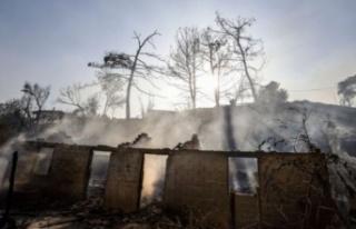 Tarım ve Orman Bakanı Pakdemirli 92 yangının kontrol...