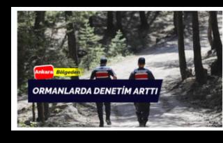 Ankara Ormanlarında Denetim Arttı