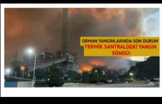Orman yangınlarında son durum: Termik santralde...
