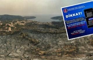 Sosyal medyadaki 'ağaç bağışı' için uyarılar...