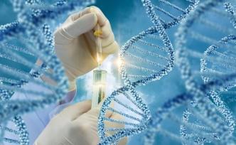 Genetik Yapımız Kime Benziyor?