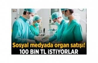 Twitter, İnsan Organı Satan Bir Sitenin Reklamını Verdi
