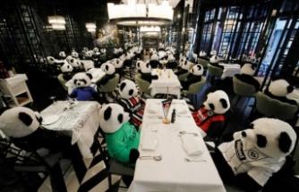 Almanya'da Pandalı Protesto!