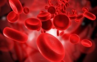 Korona virüs Çalışmaları Devam Ediyor. Kan Grubu 0 Olanların Yakalanma Riski Daha Az!