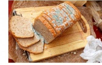 Küflü Tarafını Keserek Attığınız Ekmeğin Kalanını Yemek Ne Kadar Sağlıklıdır?