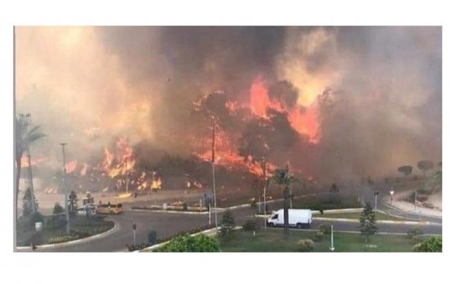 Son Dakika: Manavgat'ta Orman Yangını! Saatlerdir Müdahale Ediliyor