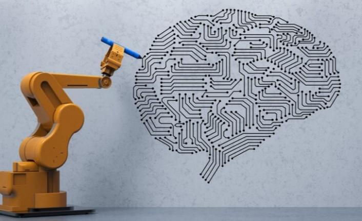 Beynin Ne Kadar Gelişmiş Olduğunu Gösterebilen Ölçüt: Nöral Karmaşıklık