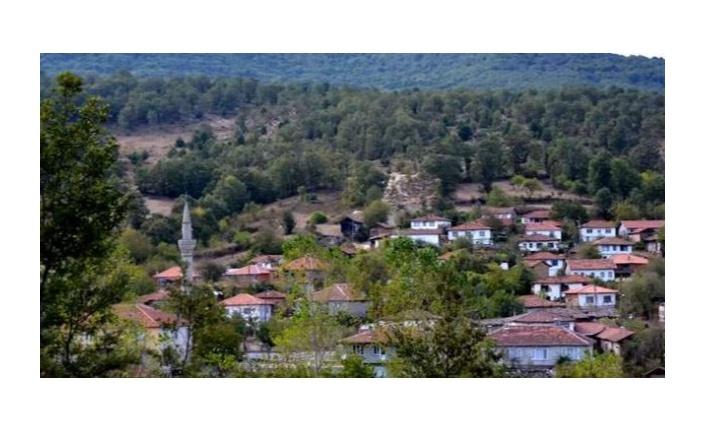 Tek Vakanın Bile Görülmediği Bursa'daki Bir Köyün Örnek Alınacak Koronavirüs Tedbirleri